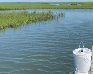 EQSphere deployed on boat in salt marsh
